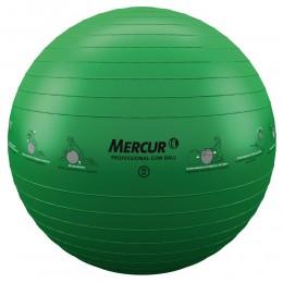 Bola Professional Gym Ball - 75cm
